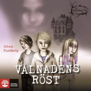 Vålnadens röst (ljudbok) av Johan Rundberg