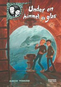 Under en himmel av glas (e-bok) av Martin Widma