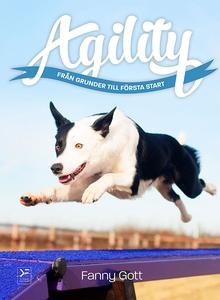 Agility - från grunder till första start (e-bok