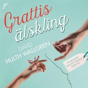 Grattis älskling (ljudbok) av David Hulth Wallg