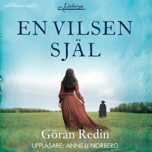 En vilsen själ (ljudbok) av Göran Redin