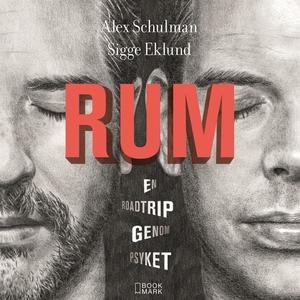 RUM : En roadtrip genom psyket (ljudbok) av Ale
