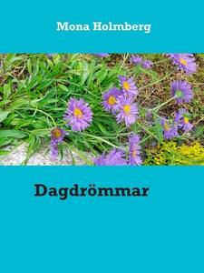 Dagdrömmar (e-bok) av Mona Holmberg