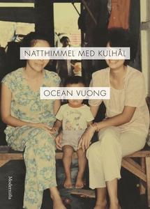Natthimmel med kulhål (e-bok) av Ocean Vuong