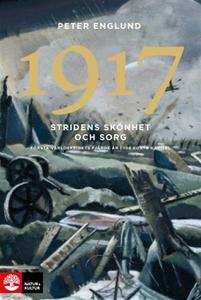 1917 Stridens skönhet och sorg : Första världsk