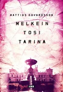 Melkein tosi tarina (e-bok) av Mattias Edvardss