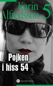 Pojken i hiss nummer 54 (e-bok) av Karin Alfred