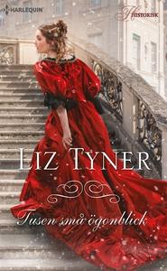 Tusen små ögonblick (e-bok) av Liz Tyner