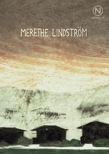 Ödelagda städer (e-bok) av Merethe Lindström