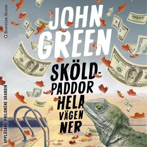 Sköldpaddor hela vägen ner (ljudbok) av John Gr