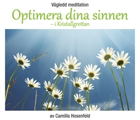 Vägledd meditation: Optimera dina sinnen