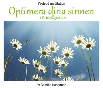 Vägledd meditation: Optimera dina sinnen (ljudb