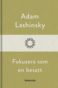 Fokusera som en besatt (e-bok) av Adam Lashinsk