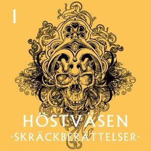 Det som existerar (ljudbok) av Kerstin Lundberg