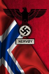 Nervøy (e-bok) av Håkan Tingsén