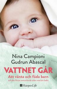 Vattnet går (e-bok) av Gudrun Abascal, Nina Cam
