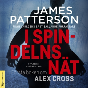 I spindelns nät (ljudbok) av James Patterson