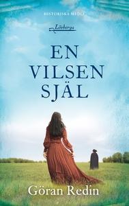 En vilsen själ (e-bok) av Göran Redin