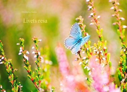 Livets Resa: En skildring av människans väg (e-