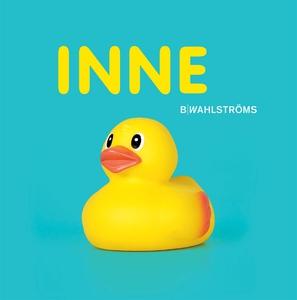 Inne (e-bok) av