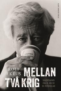 Mellan två krig (e-bok) av Rolf Ekéus