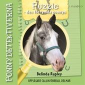 Ponnydetektiverna. Puzzle – den förrymda ponnyn
