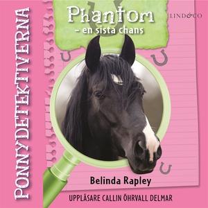 Ponnydetektiverna. Phantom - en sista chans (lj