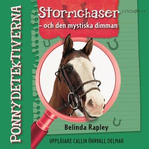 Ponnydetektiverna. Stormchaser - och den mystis