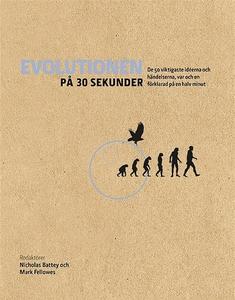 Evolutionen på 30 sekunder : de 50 viktigaste i