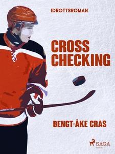 Cross checking (e-bok) av Bengt-Åke Cras