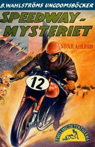 Tvillingdetektiverna 5 - Speedway-mysteriet (e-