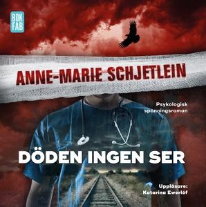 Döden ingen ser (ljudbok) av Anne-Marie Schjetl