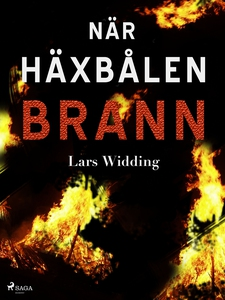 När häxbålen brann (e-bok) av Lars Widding