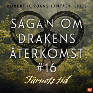 Järnets tid (ljudbok) av Robert Jordan