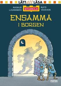Ensamma i borgen (e-bok) av Magnus Ljunggren