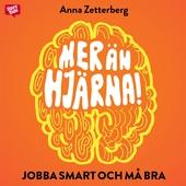 Mer än hjärna : jobba smart och må bra