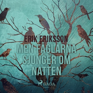 Men fåglarna sjunger om natten (ljudbok) av Eri
