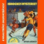 Tvillingdetektiverna 7 - Ishockey-mysteriet