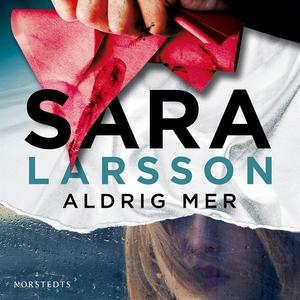 Aldrig mer (ljudbok) av Sara Larsson
