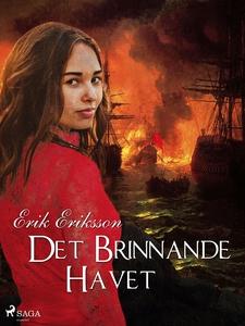 Det brinnande havet (e-bok) av Erik Eriksson
