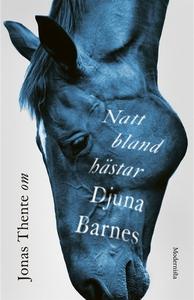Om Natt bland hästar av Djuna Barnes (e-bok) av