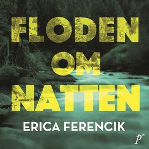 Floden om natten (ljudbok) av Erica Ferencik