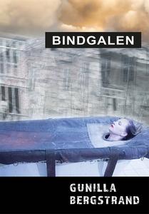 Bindgalen (e-bok) av Gunilla Bergstrand