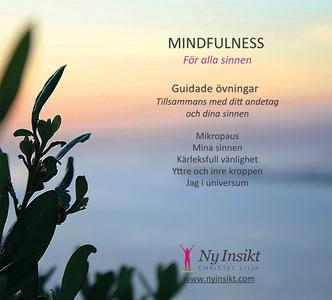Mindfulness : för alla sinnen (ljudbok) av Chri