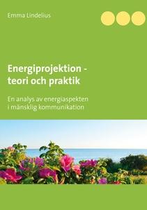 Energiprojektion teori och praktik: En analys a