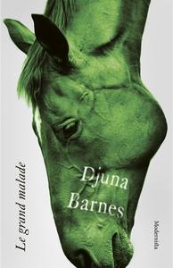 Le grand malade (e-bok) av Djuna Barnes