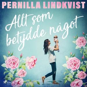 Allt som betydde något (ljudbok) av Pernilla Li
