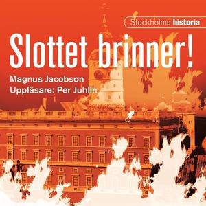 Slottet brinner! (ljudbok) av Magnus Jacobson
