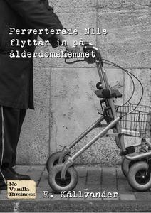 Sex på ålderdomshemmet (e-bok) av E. Källvander