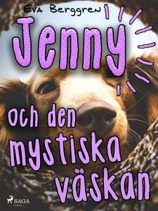 Jenny och den mystiska väskan (e-bok) av Eva Be